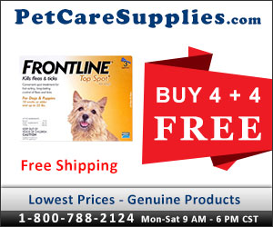 Buy 4, Get 4 Doses Free + 10% Extra Discount & Free Shipping