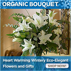 Heart Warming Wintery Eco-Elegant Flowers & Gifts