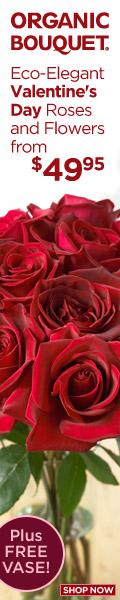 1 Dozen Roses + Free Vase at OrganicBouquet.com