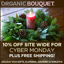 10% OFF site wide for Cyber Monday