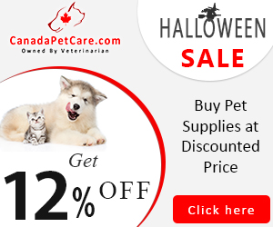 Halloween Sale: Extra 12% Discount + Free Shipping on All Pet Supplies