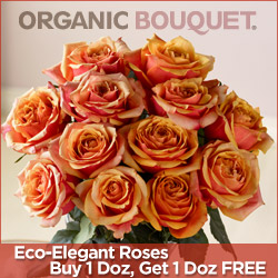 BOGO Roses At OrganicBouquet.com