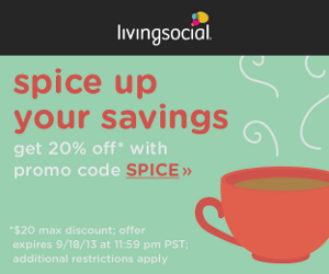 Take 20% off your next purchase on LivingSocial.com when you use promo code