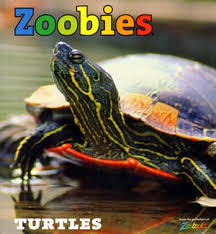 Save 50% on Zoobies at MagazineOutlet!