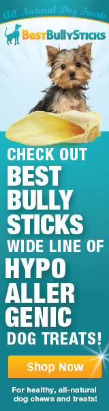 Shop All-Natural Bully Sticks from BestBullySticks.com