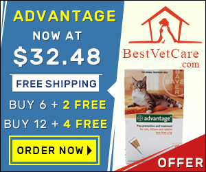 Buy Online Advantage Flea Cats at lowest price & Free Shipping