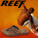 Free shipping on Reef sandals, on orders over $40