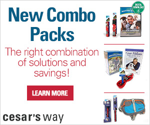 Save big on Cesar's Dog Training Combo Packs