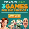 Play over 1,500 games at WildTangent.com!