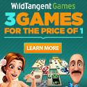 wildtangent.com