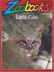 Save 50% on Zoobooks at MagazineOutlet!