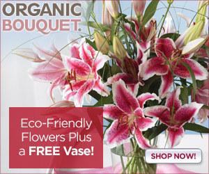 Get a free vase at checkout when ordering select b