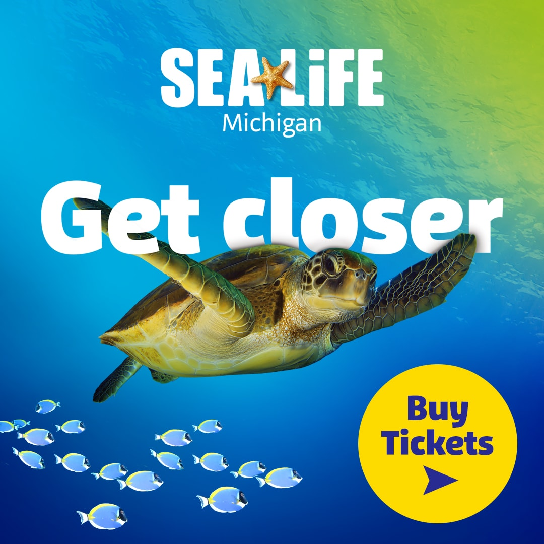 Visit SEA LIFE Michigan Aquarium