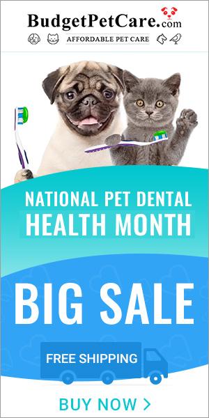 National Pet Dental Month Sale