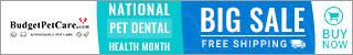 National Pet Dental Month Super Sale