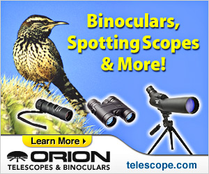 Free Gift from Orion Telescopes & Binoculars