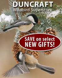 Duncraft GIFT Deal of The Day!