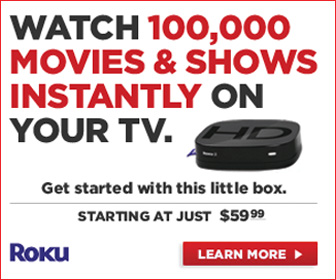 Roku + Netflix = Instant Movies on your TV