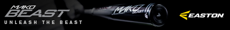 Easton Baseball Mako Beast 460x60