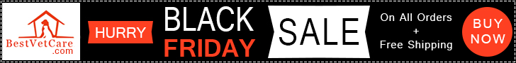 BLACK FRIDAY: Best Deals of the Season to Save Extra 15% Off & Free Shipping