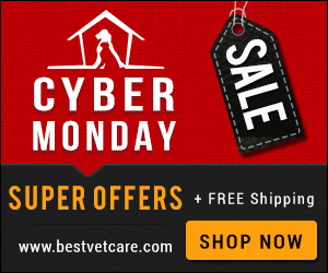 Cyber Monday Online Specials Sale