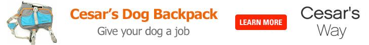 Cesar Millan's Dog Backpack -Shop Now!