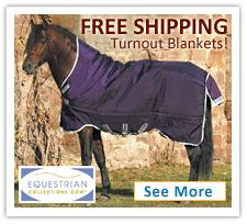 Free Shipping on Horse Blankets!