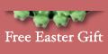 Free Easter Gift - Fun Frog Fudgies