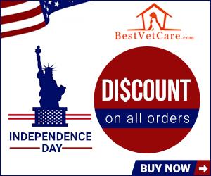 Independece Day Exclusive