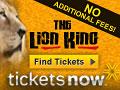 No Fees Lion King