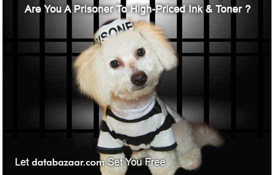 Are You A Prisoner To High-Priced Ink & Toner