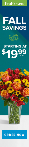Fall Flowers & Gifts from only $19.99 at ProFlowers 120 x 600