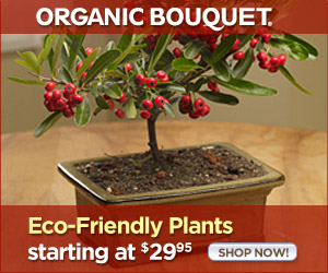 Organic Holiday Gift Baskets At OrganicBouquet.com