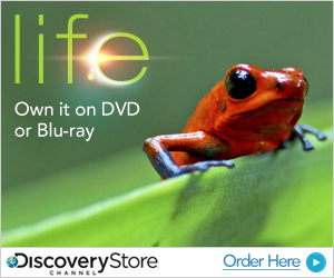 Be the first to own LIFE from Discovery Channel