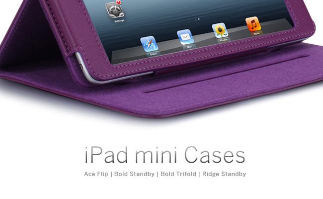 iPad mini Cases