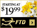 Beautiful Flowers & Gifts starting at $19.99