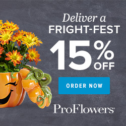 250 x 250 - 15% off Halloween Decor & Gifts at ProFlowers