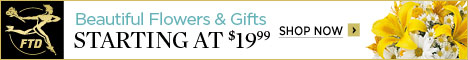 Beautiful Flowers & Gifts starting at $19.99 468 x 60