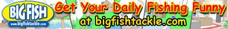Daily Fishing Comics!