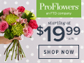 Pro Flowers from $19.95