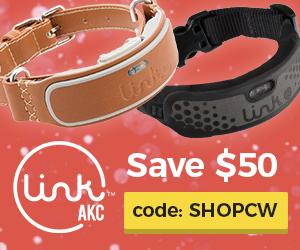 Dog GPS Collar Cyber Monday Deal