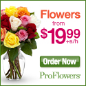 Flowers and Gifts from $19.99 @ ProFlowers.com.