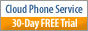 88x31 Cloud Business Phone Service