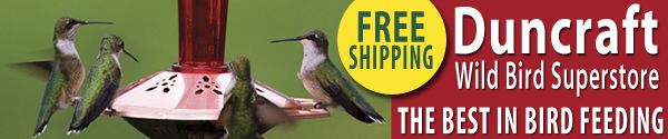 Shop Duncraft Wildbird Superstore for Everything You Need for Backyard Birdfeeding!