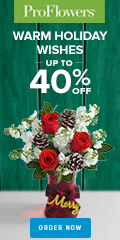 Up to 40% off Holiday Flowers & Gifts at ProFlowers 120x240
