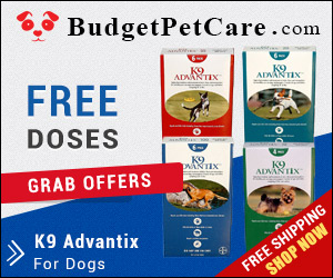 Online K9 Advantix For Dogs at Cheapest Price & Free Shipping