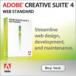 Web Standard CS4