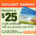 Get a $25 e-gift certificate when you spend $100