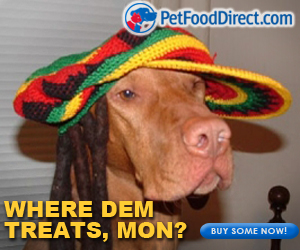 dog treats meme