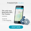 Findster GPS Pet Tracker, Price and Free Shipping